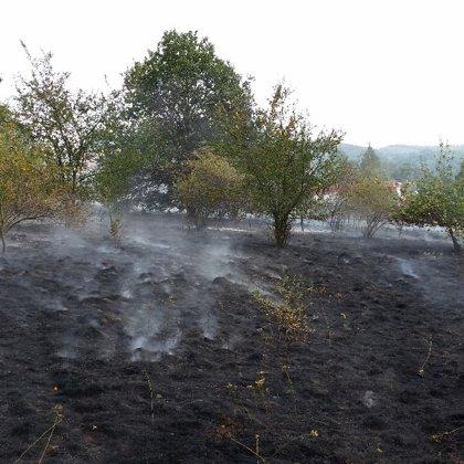 Požár louky na Rajchardově - 2. 8. 2018