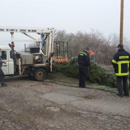 Vánoční stromeček pro Pikovice 2018